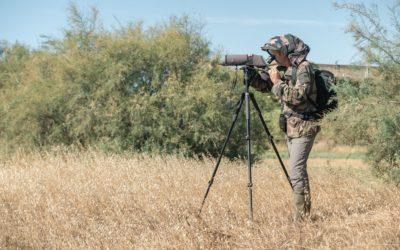 Quel équipement pour observer les oiseaux confortablement ?