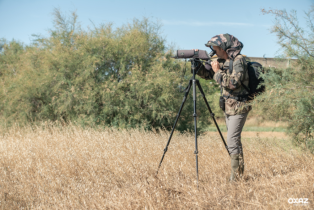What equipment to watch birds comfortably in all season?